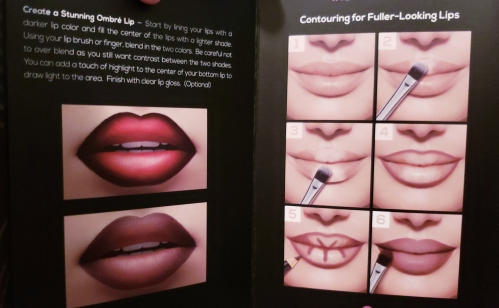 Fab Or Fail Aesthetica Contour Series Lip Kit Review